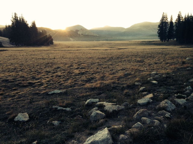 Sunrise in Tuolumne Meadows, 8/18/14