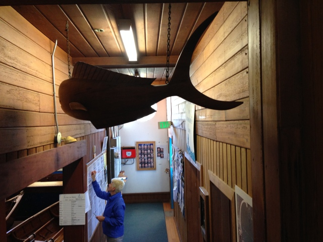 Club's entry with a member diligently recording her PB miles.  Note the large wood carving of a dolphin.