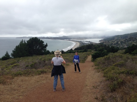 On the Dipsea Trail's The Moors section, looking back towards Stinson Beach.