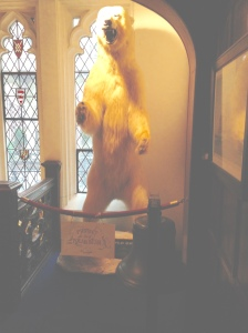 Explorers Club's clubhouse ambiance aided by the Polar Bear